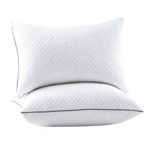GOHOME Full Size Down Alternative Hyperallergenic Pillows for Side and Back Sleepers